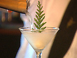 Alpine Martini
