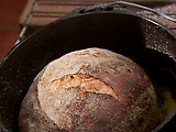 Knead Not Sourdough