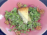 Blue Cheese Cheesecake with Baby Greens, Candied Walnuts and a Pear Vinaigrette