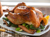 Spiced and Super-Juicy Roast Turkey