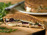Turkey, Cranberry and Fontina Panini