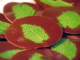 Chocolate-Mint Tiddlywinks