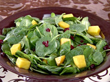 Spinach Salad with Mangos, Dried Cranberries and Chocolate Vinaigrette