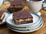 Fudgy Salty Peanut Butter Brownies