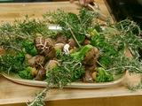 Rosemary Skewers of Shiitake Mushroom, Broccoli and Garlic Cloves