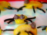 Chocolate Apricot Bugs