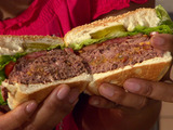 Bacon, Onion and Cheese Stuffed Burger