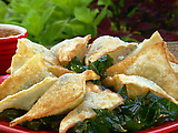 Fried Collard Green Wontons