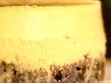 Chocolate Lime Cheesecake