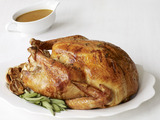Roast Turkey with Garlic, Sage and Fennel