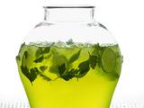 Herb Refresher