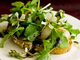 Butter-Braised Cipollini Onions with Arugula and Balsamic Syrup on Multi-grain Toast