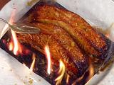 Cedar-Planked Teriyaki Salmon