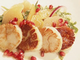Seared Scallops with Citrus, Arugula and Pomegranate Salad