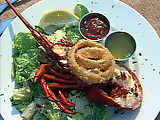 Grilled California Lobster
