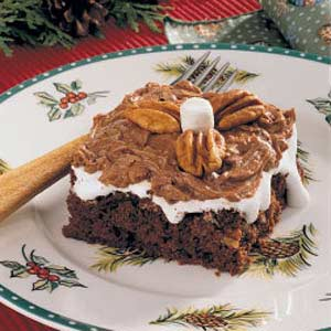 Mississippi Mud Cake Recipe