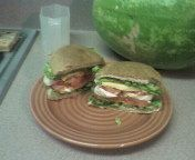 favorite cheddar sandwich