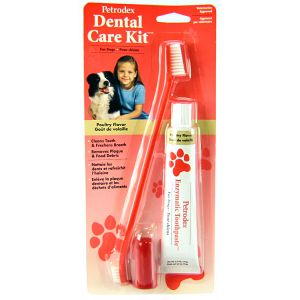 Petrodex Dental Care Kit for Dogs: Poultry Flavor #51150 - Dog Dental Care Best Price