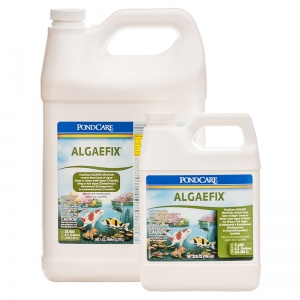 PondCare AlgaeFix Algae Control for Ponds - Pond Algae Control Best Price