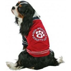 Fashion Pet Red Athletic Jersey: Large #12RLG - Active Dog Wear Best Price