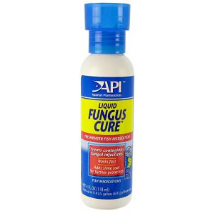 Aquarium Pharmaceuticals Liquid Fungus Cure - Bacterial and Fungal Aquarium Medications Best Price