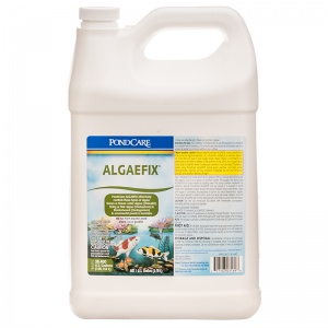 PondCare AlgaeFix Algae Control for Ponds: 1 Gallon - (Treats 38 400 gallons) #169C - Pond Algae Control