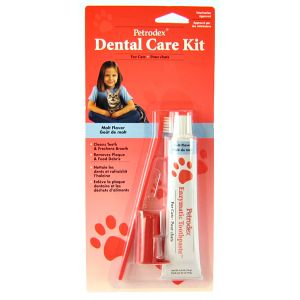 Petrodex Dental Care Kit for Cats - Cat Dental Care Best Price