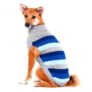 Fashion Pet Best In Stripe Sweater - Blue - Dog Sweaters Best Price