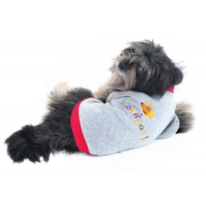 Fashion Pet Lookin' Good! Sweatshirt - Grey