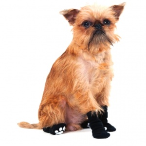 Fashion Pet Solid Slipper Socks - Black - Dog Boots Best Price