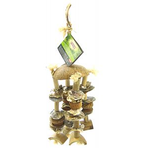 Living World Natures Treasure Coco Shell Chime: Medium/Large Hookbills #81282 - Bird Toys Best Price