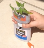 Glue Bottle Hydroponic Garden