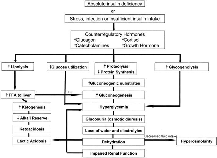 nursing care plan for patient with diabetic ketoacidosis