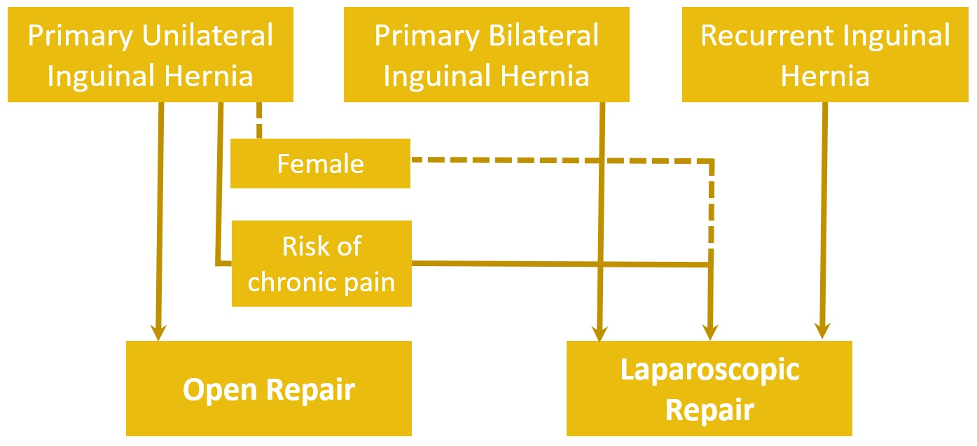 Fig 4 - Inguinal hernia treatment algorithm