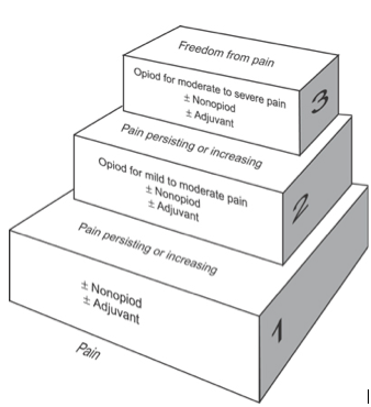 Fig 1 - The WHO pain relief ladder, commonly used in the management of pain due to cancer.