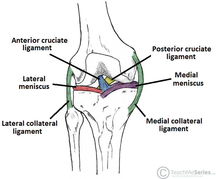 medial collateral ligament tear grading management teachmesurgery