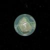 Tarris 2021 03 20 17 23 (1)