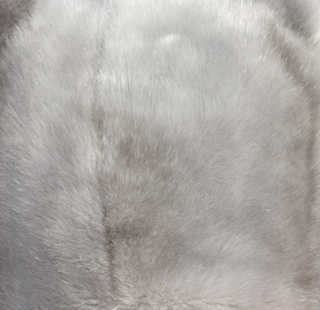 Fur and feathers 0008