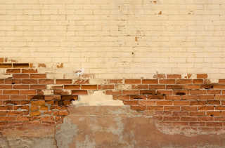 Painted brick 0039