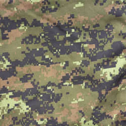 Camouflage Category