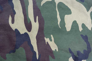 Camouflage 0003