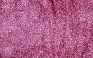 Leather 0019