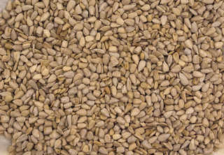 Grains and seeds 0018