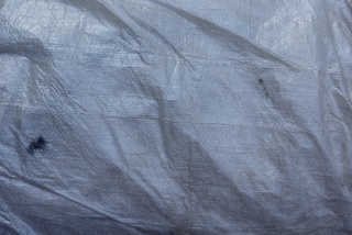 Plastic bags and wrap 0011