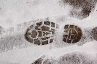Footprints and animal tracks 0034
