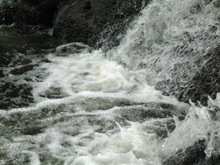 Foam and rapids 0028