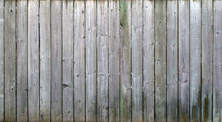 Texture of /wood/wood-fences/wood-fences_0003_03
