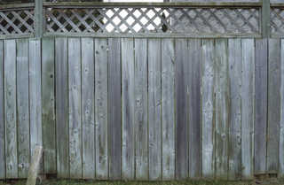 Wood fences 0018