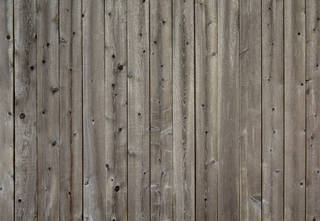 Texture of /wood/wood-fences/wood-fences_0047_02