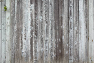 Texture of /wood/wood-fences/wood-fences_0063_02